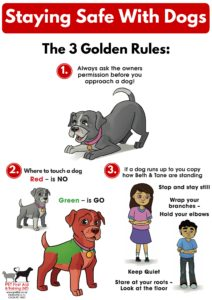 staying-safe-with-dogs